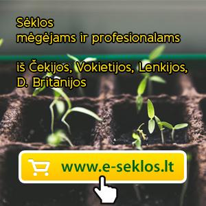 E-sėklos